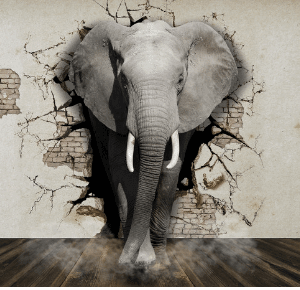 Issue Resolution Eliminating the Elephant in the room